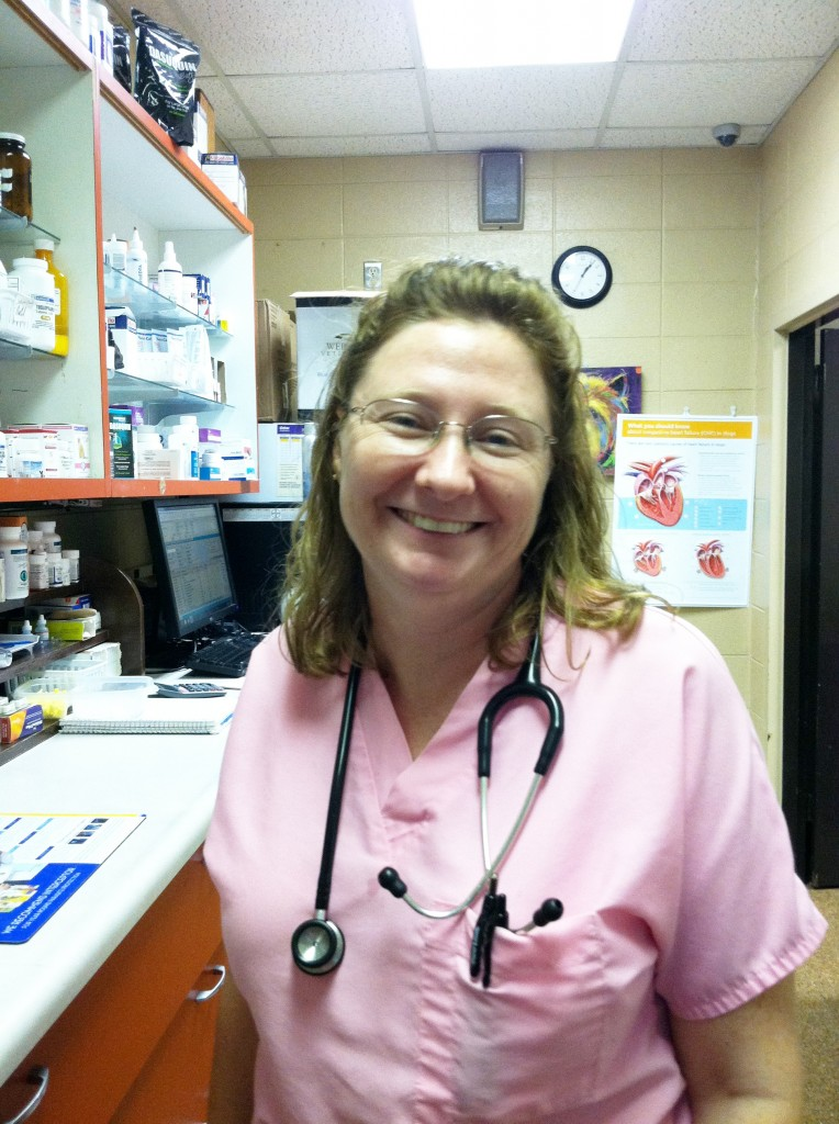 Dr. Amy Hastings