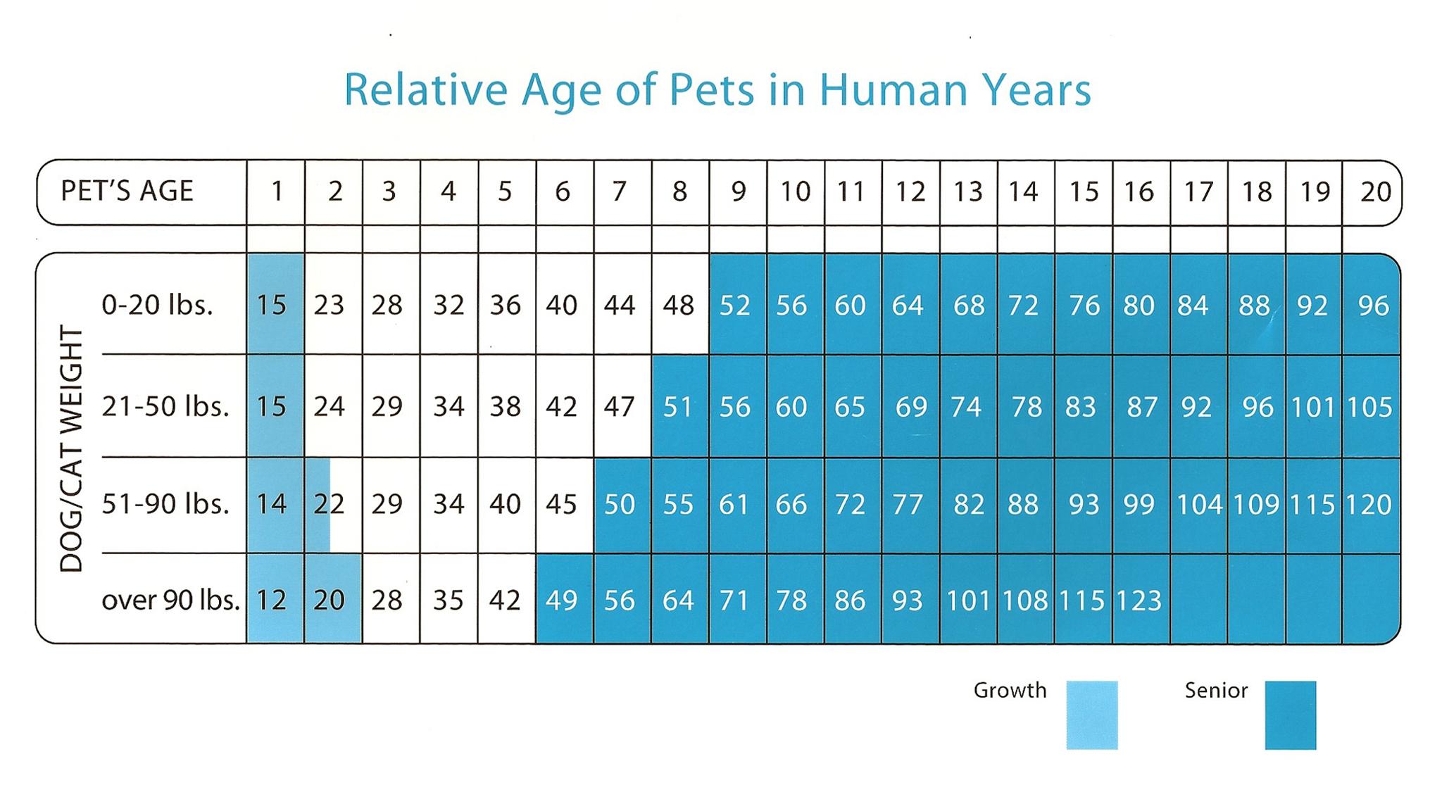 Pet Age Chart